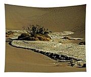 Death Valley Salt Tapestry