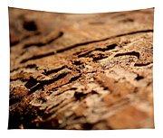 Debarked Tree Tapestry