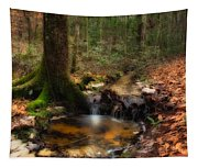 Deep Forest Creek Tapestry