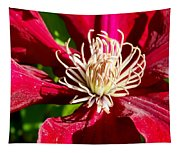 Deep Red Clematis Tapestry