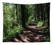 Deep Woods Road Tapestry
