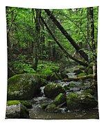Deep Woods Stream 3 Tapestry