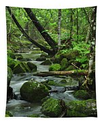 Deep Woods Stream Tapestry