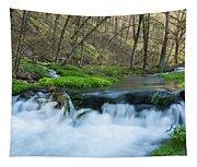 Deer Creek Ia 6 Tapestry