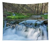 Deer Creek Ia 7 Tapestry