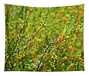 Deerweed In Rancho Santa Ana Botanic Gardens, Claremont-california Tapestry