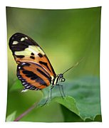 Delicate Butterfly Tapestry