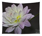 Delicate Dahlia Balance Tapestry