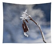 Delicate Winter Tapestry