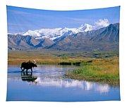 Denali National Park Tapestry