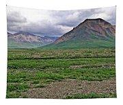 Denali National Park Landscape 3 Tapestry