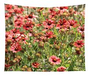 Desert Beauties Tapestry