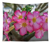 Desert Rose Or Chuanchom Dthb2105 Tapestry