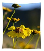 Desert Sunflower Tapestry