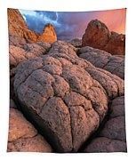 Desert Turtle Tapestry