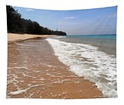 Deserted Shore Of The Island Of Tioman Tapestry