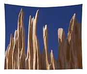 Detail Of Bristlecone Pine Tapestry