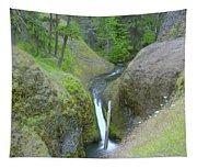 Devil Creek Falls   Tapestry