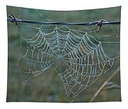 Dew On The Web Tapestry