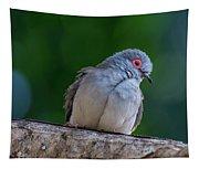 Diamond Dove Tapestry