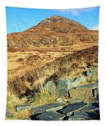 Diamond Hill Tapestry