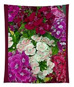 Dianthus Group  Tapestry