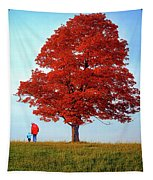 Discovering Autumn Tapestry