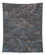 Disturbance Tapestry