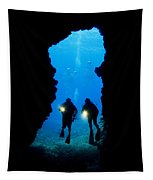Divers Silhouetted Through Reef Tapestry
