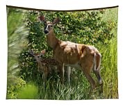 Doe And Fawn Tapestry