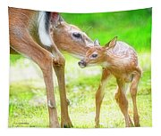 Doe Nuzzles Her Fawn Tapestry