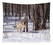 Dog Breed German Shepherd Tapestry