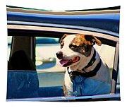 Dog In Car Tapestry
