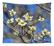 Dogwood In Bloom Tapestry