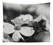 Dogwoods In Black And White Tapestry