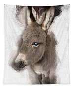 Donkey Foal No 02 Tapestry