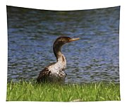 Double-crested Cormorant 4 Tapestry