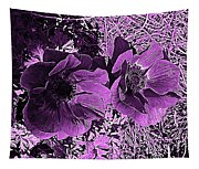 Double Poppies In Purple Tapestry