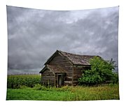 Dougherty Country 2 Tapestry