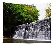 Dove Lake Waterfall Tapestry