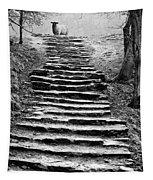 Dovedale Steps Tapestry