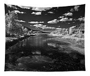 Dover Slough 2 Tapestry