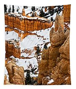 Down Into The Canyon Tapestry
