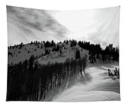 Downhill Tapestry