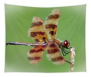 Dragon Fly Tapestry