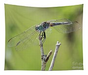 Dragonfly Against Green Backdrop Tapestry