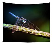Dragonfly Beauty Tapestry