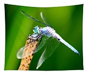 Dragonfly Blue Tapestry
