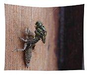 Dragonfly Ecdysis Tapestry