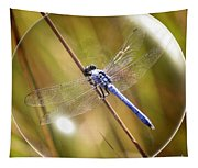Dragonfly In A Bubble Tapestry